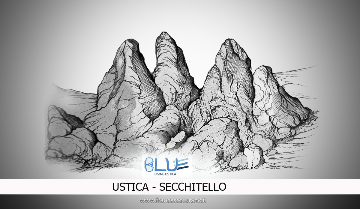 secchitello web geo